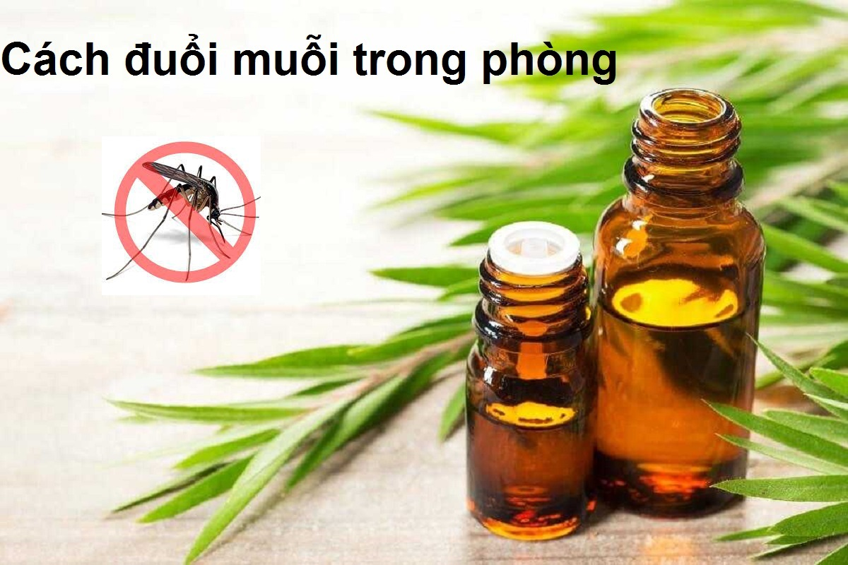 Cach duoi muoi trong phong